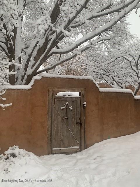 Winter Corrales