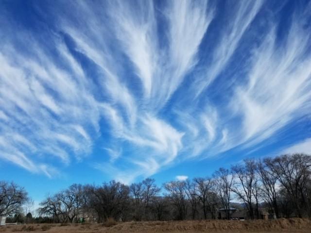 January Clouds