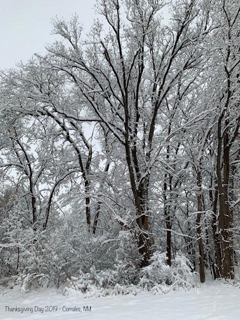 Corrales Winter