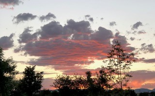 Sunrise Edgewood